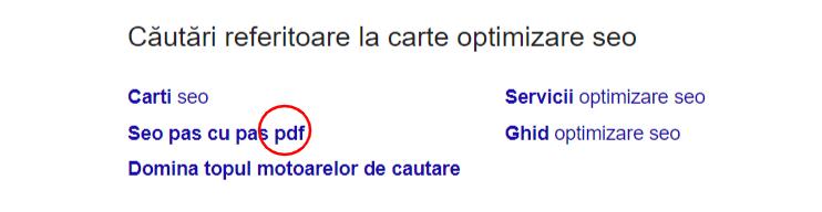 optimizare seo pdf